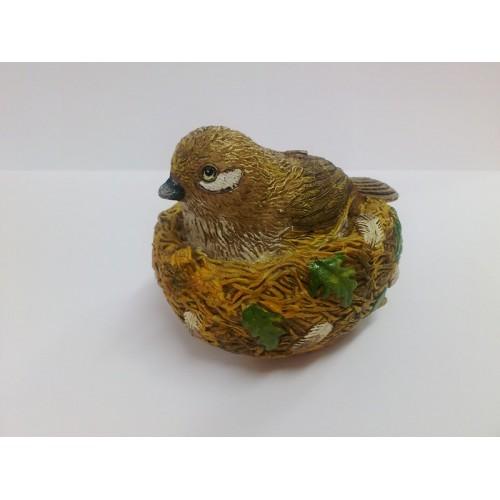 Κερί Πουλί σε Φωλιά